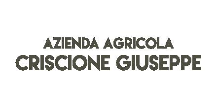 Criscione Giuseppe